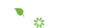 logo-fittea